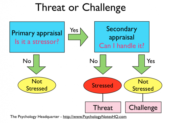 What is stressor