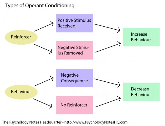 Educational Psychology Notes What Is Operant Conditioning
